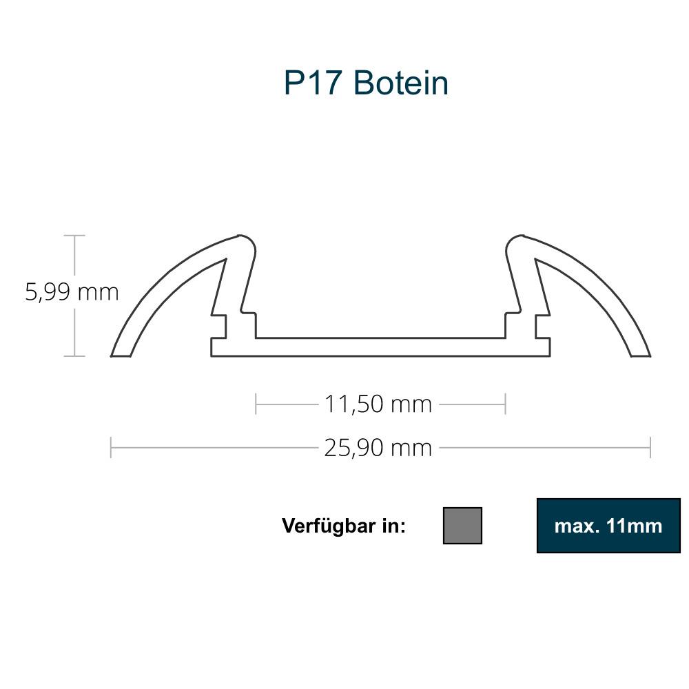 P17 Botein